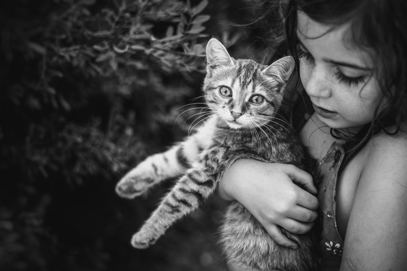 Children and Senior Photography, little girl holding a cat