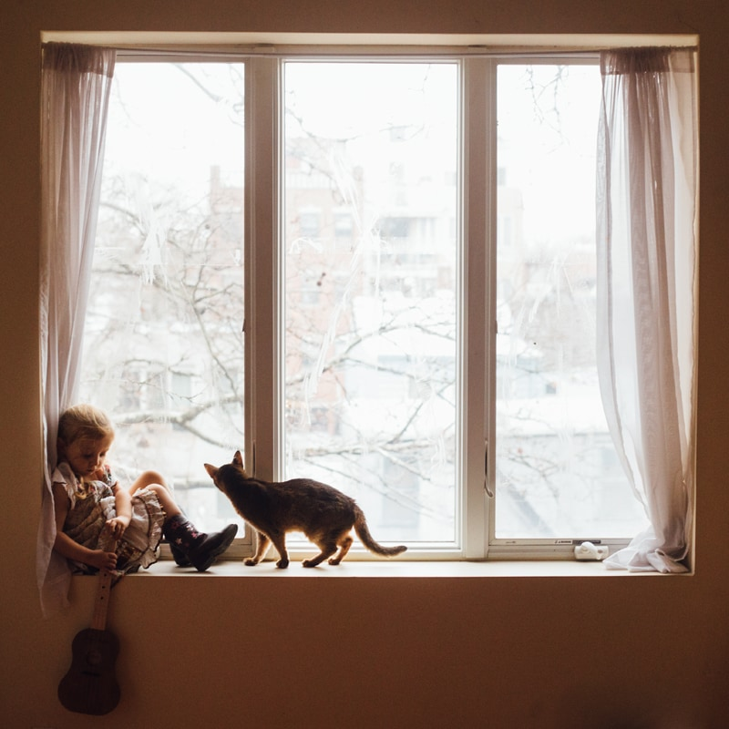 Children and Senior Photography, child in windowsill with cat